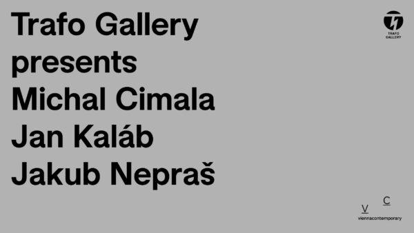 Trafo Gallery at Vienna Contemporary