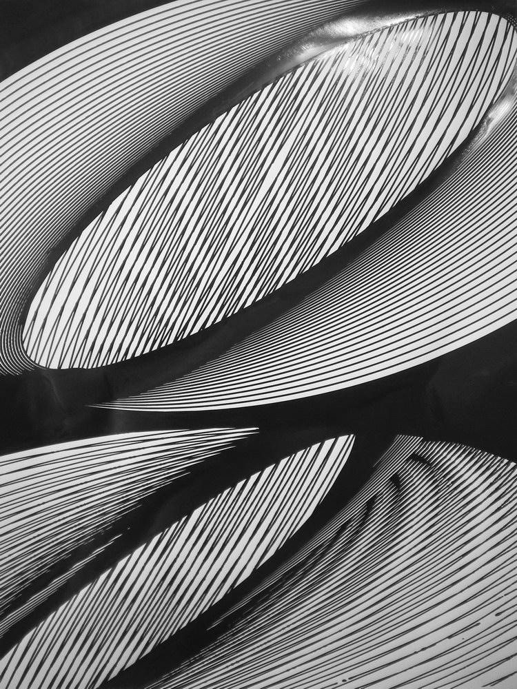 18-jorrit-paaijmans-without-titel-black-ink-on-paper