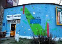 130328_viola_glowacka_01